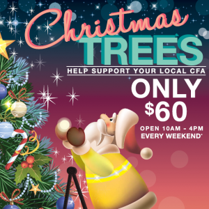 Mt Eliza FIre Brigade Christmas Tree Sale